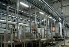 Завод по переработке мяса свиней 8